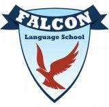 Falcon Language School