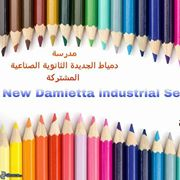 Mixed New Damietta Secondary Industrial School