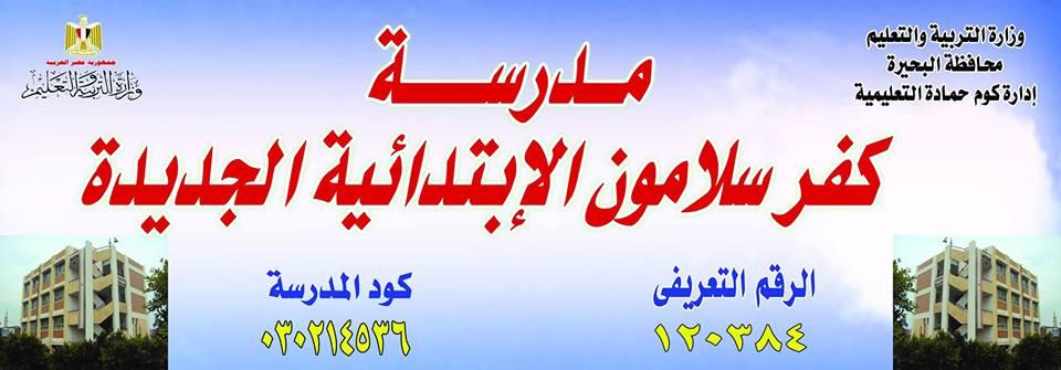 Kafr Salamoun School